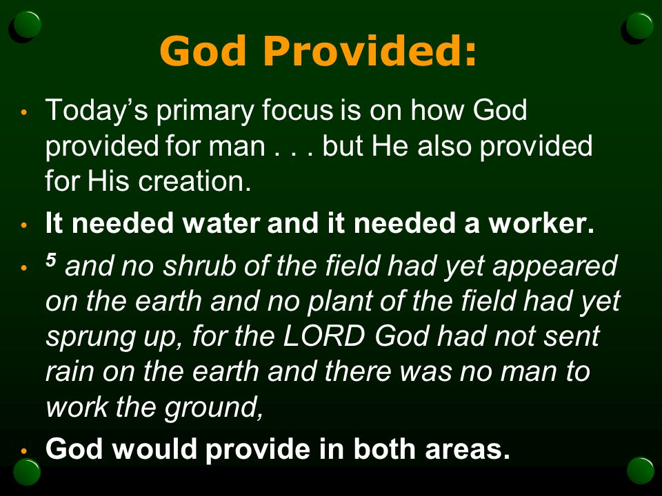 God Provided: Today's primary focus is on how God provided for man . . . but He also provided for His creation.