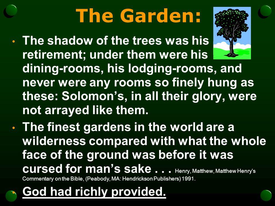 The Garden: