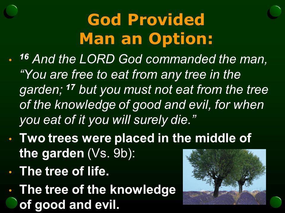 God Provided Man an Option: