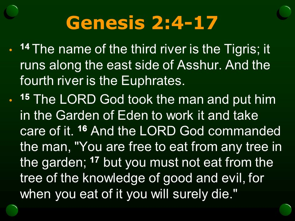 Genesis 2:4-17 14 The name of the third river is the Tigris; it runs along the east side of Asshur. And the fourth river is the Euphrates.