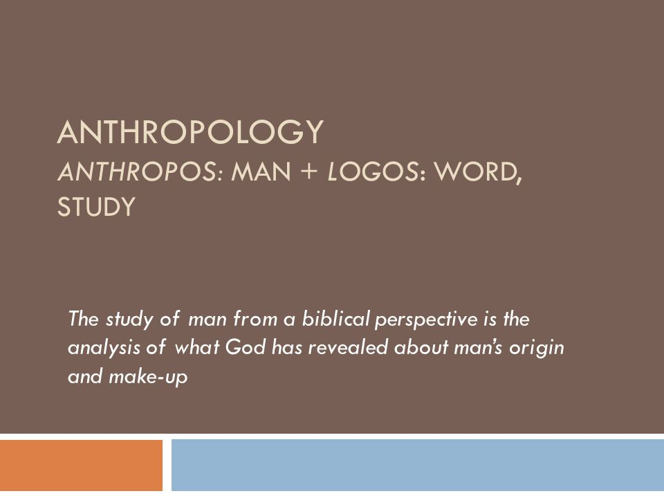 Anthropology anthropos: MAN + logos: word, study