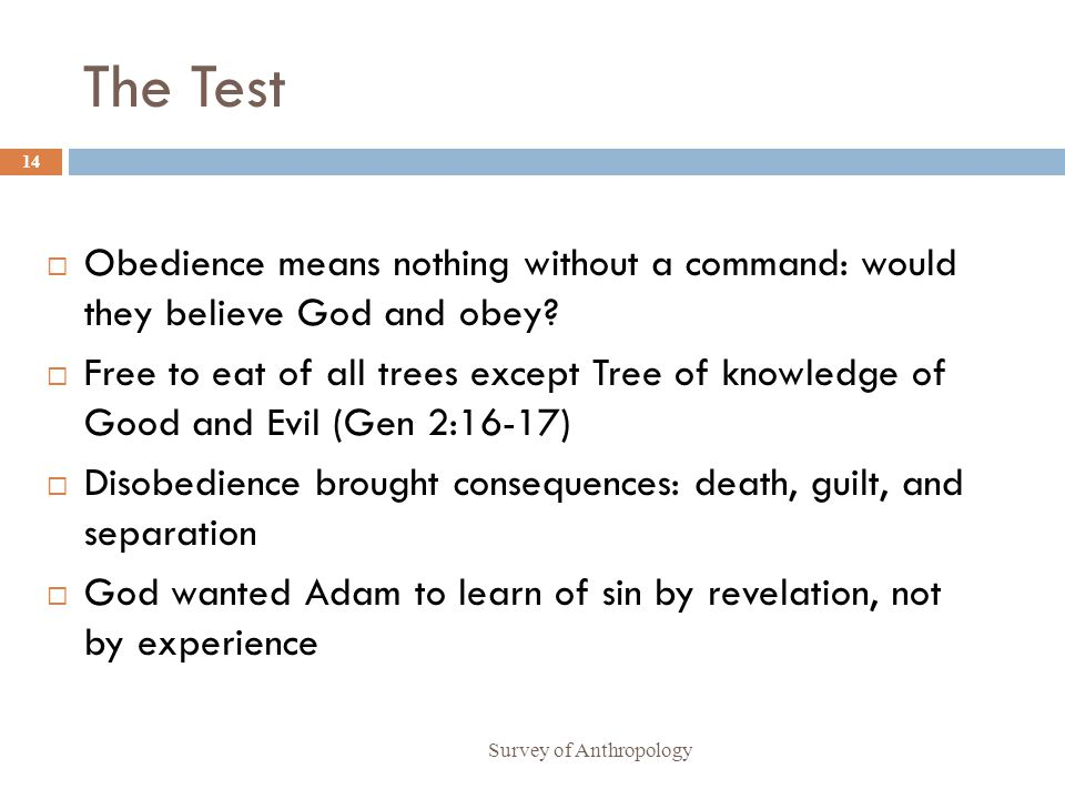 The Test Obedience means nothing without a command: would they believe God and obey