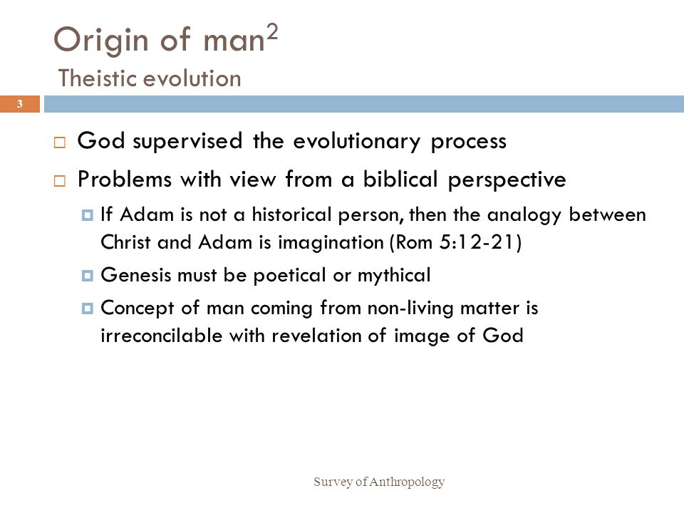 Origin of man2 Theistic evolution