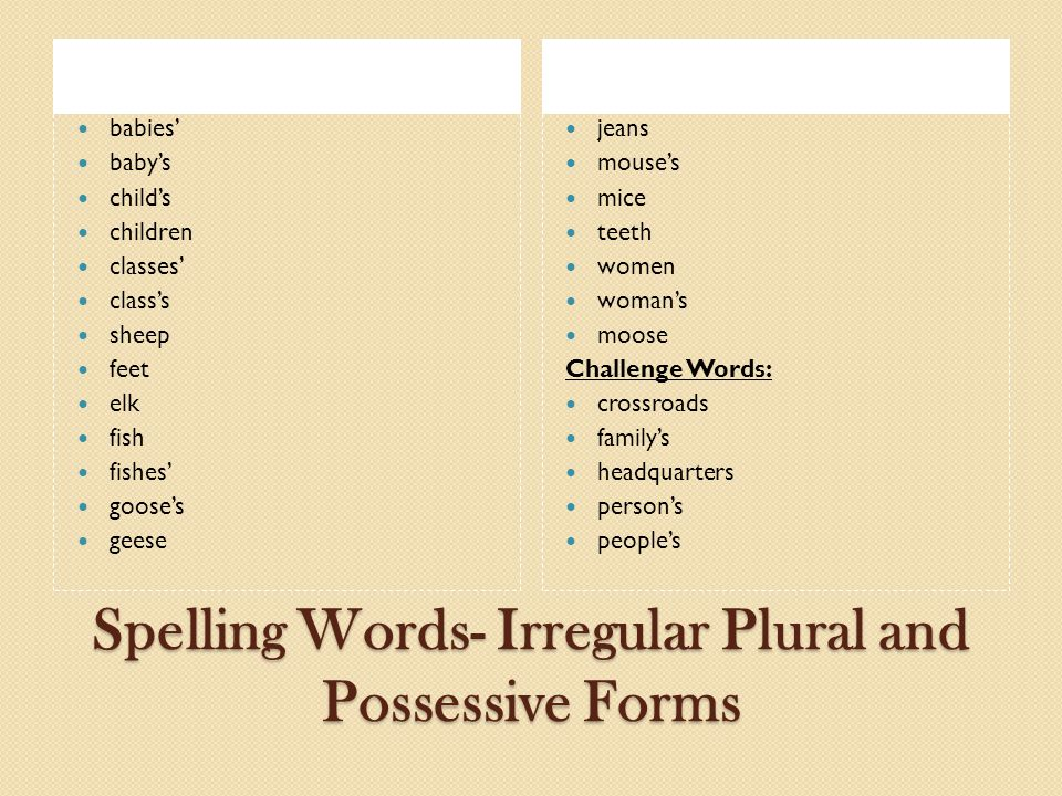 Spelling Words- Irregular Plural and Possessive Forms