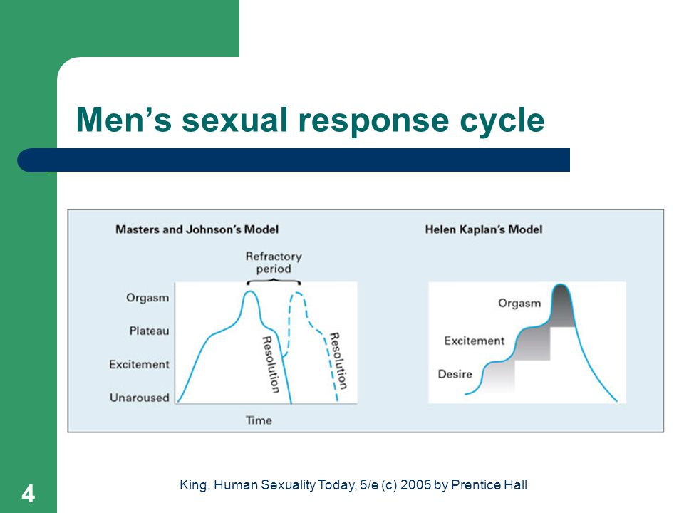 Men's sexual response cycle