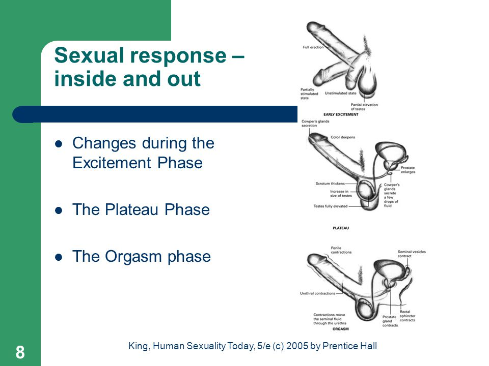 Sexual response – inside and out