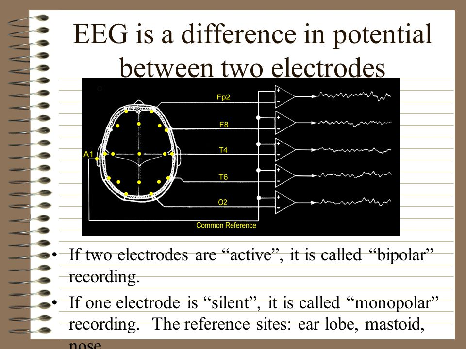 EEG is a difference in potential between two electrodes