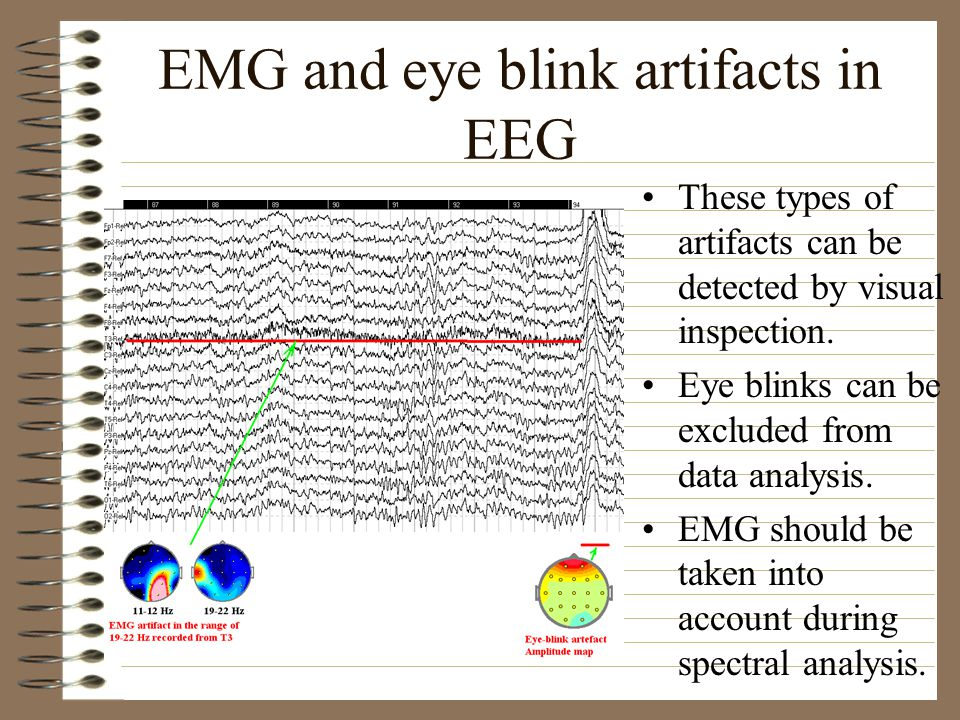 EMG and eye blink artifacts in EEG