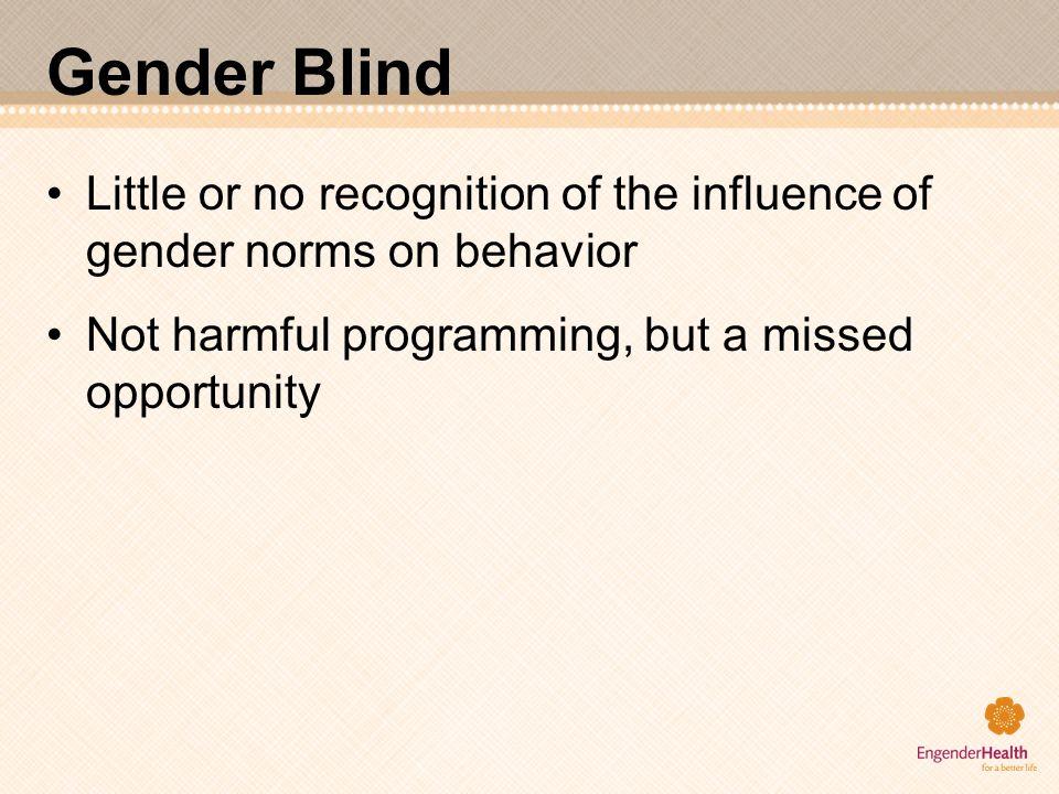 Gender Blind Little or no recognition of the influence of gender norms on behavior.