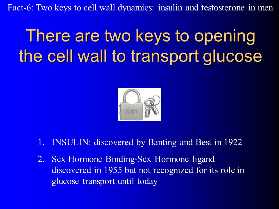 There are two keys to opening the cell wall to transport glucose