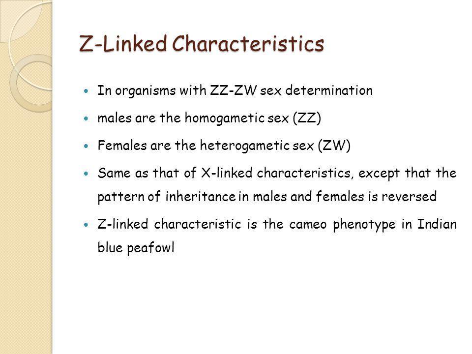 Z-Linked Characteristics