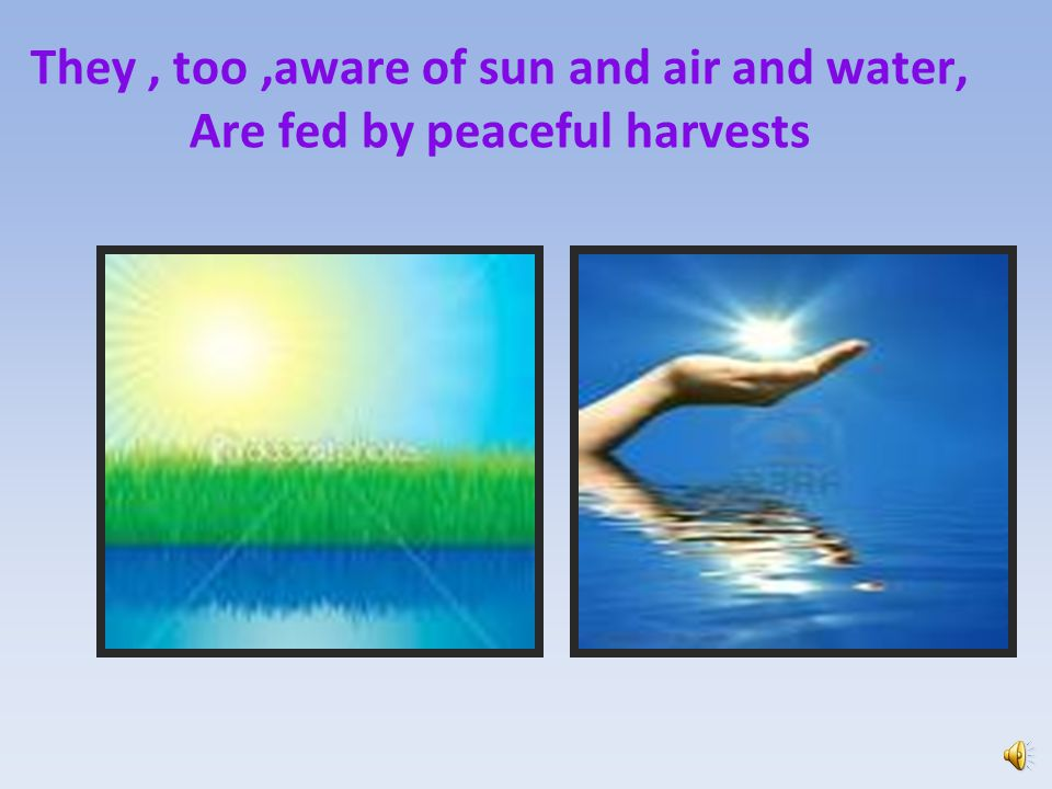 They , too ,aware of sun and air and water, Are fed by peaceful harvests
