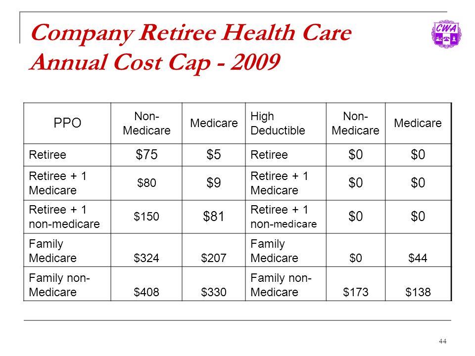 Company Retiree Health Care Annual Cost Cap - 2009