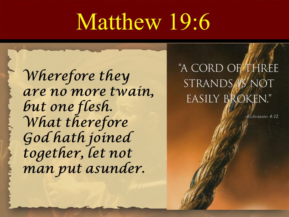 Matthew 19:6 Wherefore they are no more twain, but one flesh. What therefore God hath joined together, let not man put asunder.