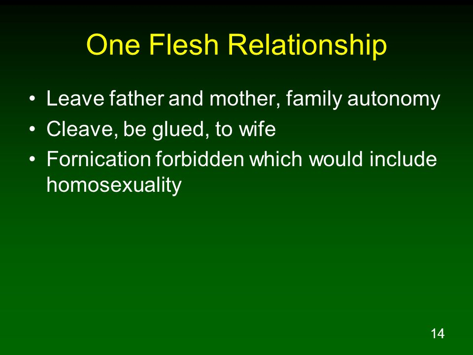 One Flesh Relationship