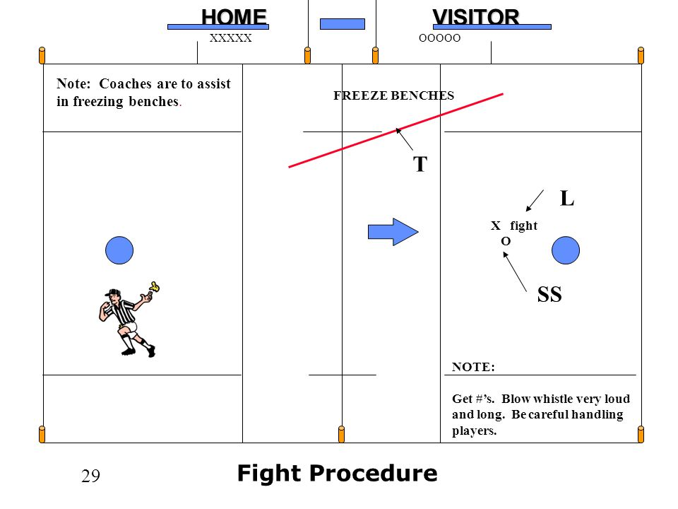 T L SS Fight Procedure Note: Coaches are to assist