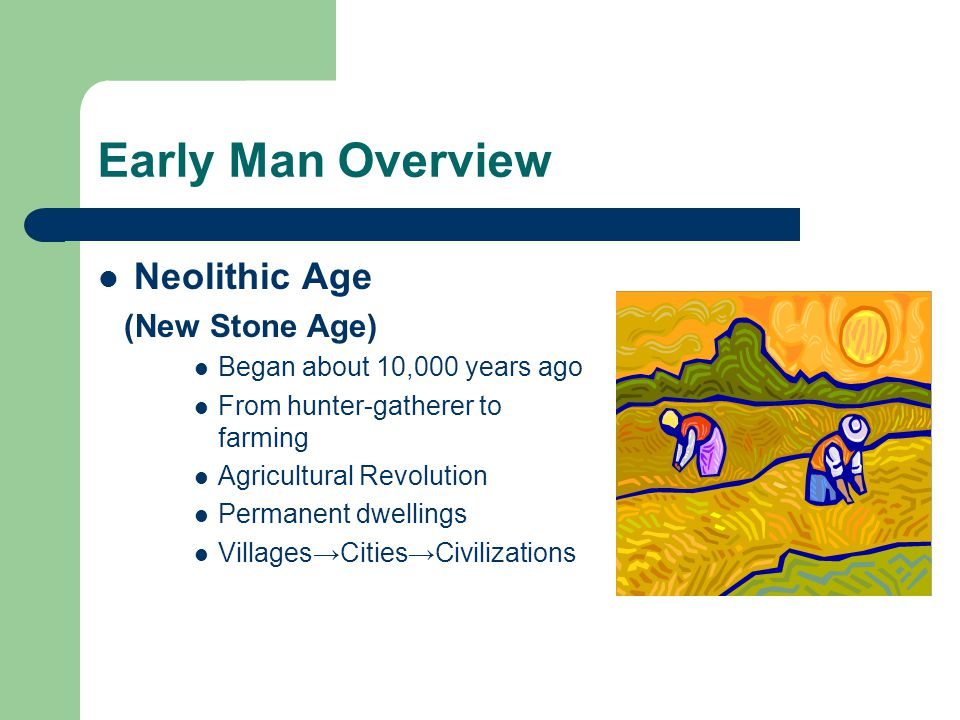 Early Man Overview Neolithic Age (New Stone Age)