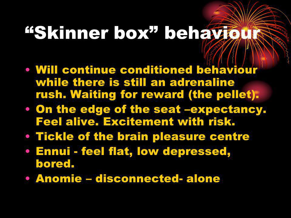 Skinner box behaviour