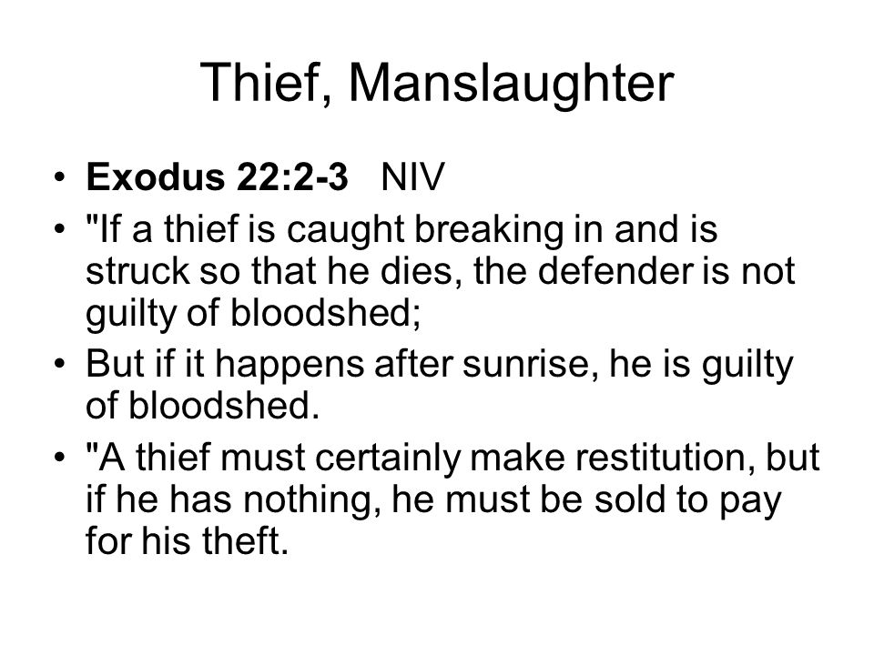 Thief, Manslaughter Exodus 22:2-3 NIV