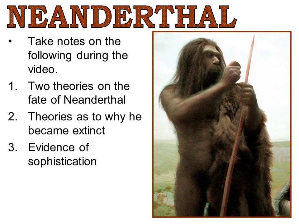 NEANDERTHAL Take notes on the following during the video.