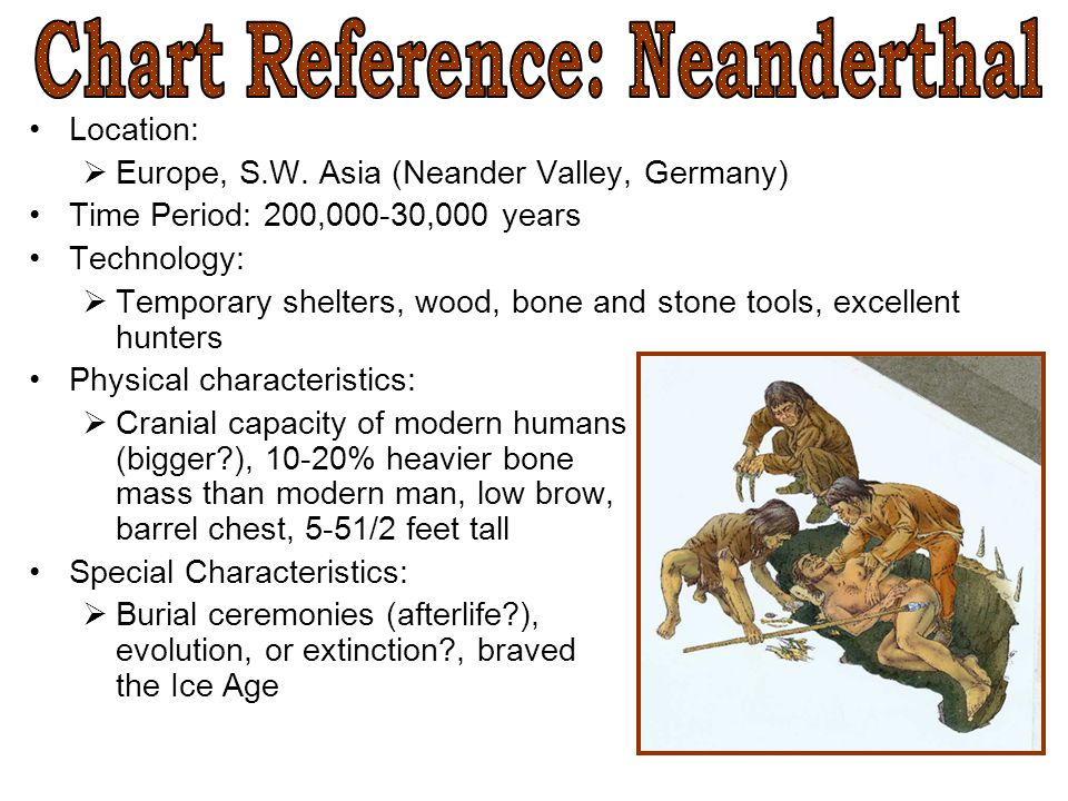 Chart Reference: Neanderthal