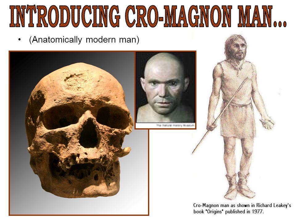 INTRODUCING CRO-MAGNON MAN...