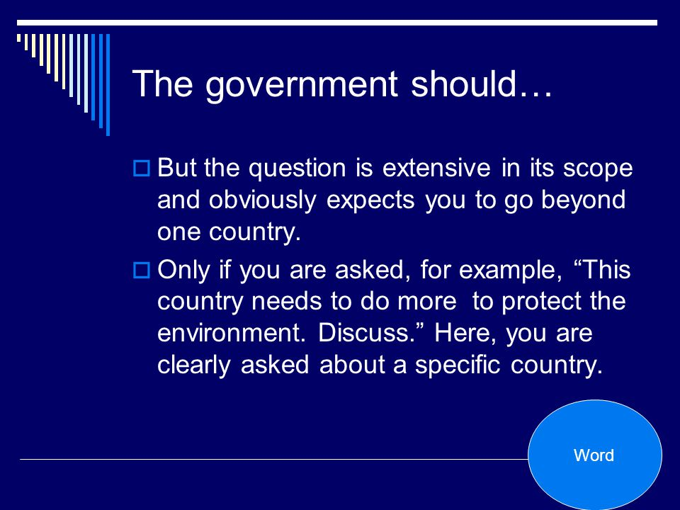The government should…