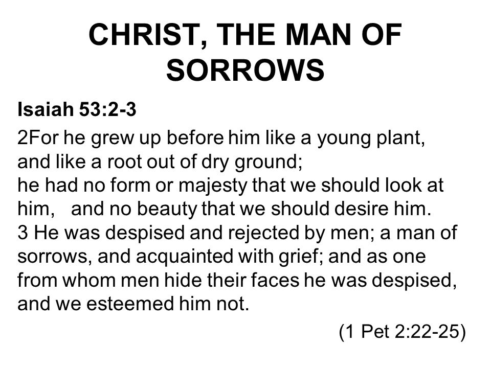 CHRIST, THE MAN OF SORROWS