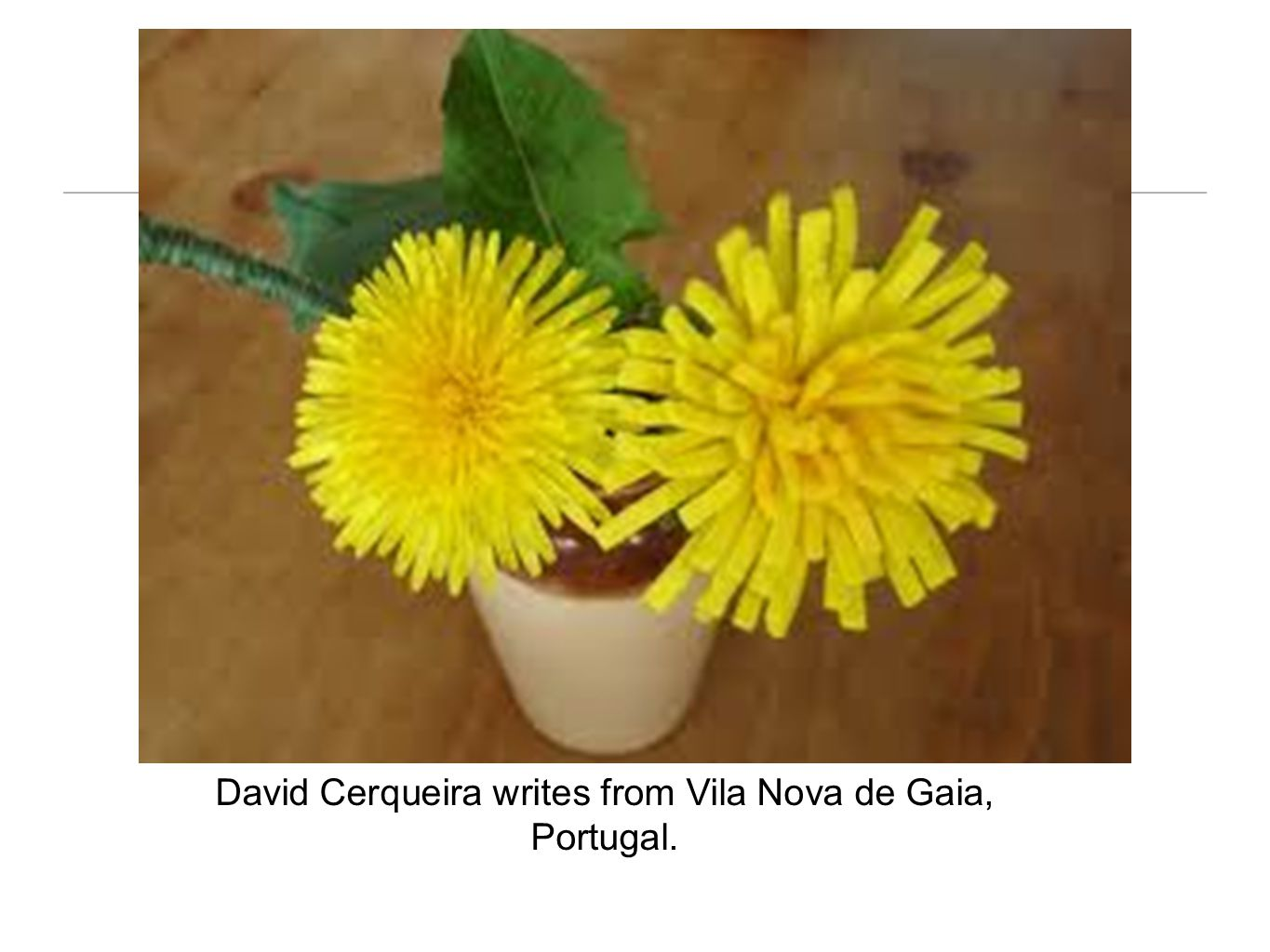David Cerqueira writes from Vila Nova de Gaia, Portugal.