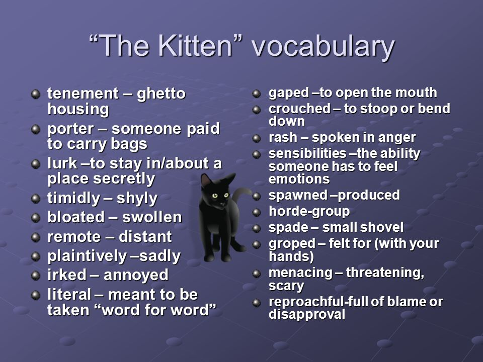 The Kitten vocabulary