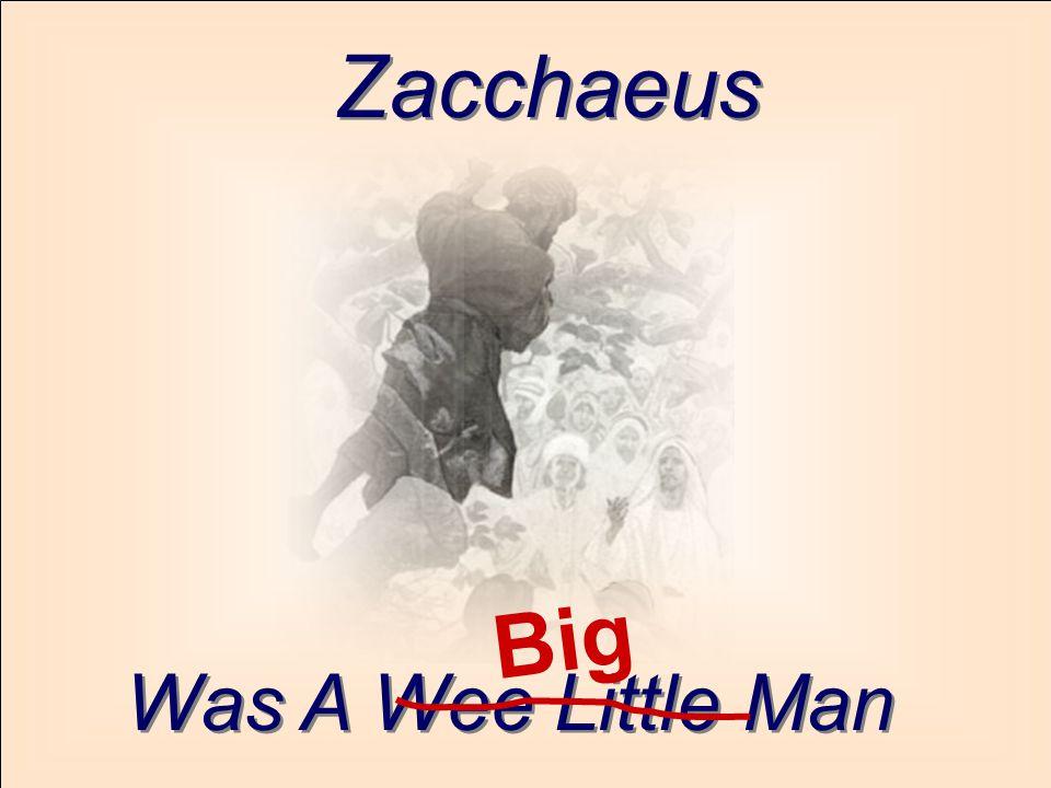 Zacchaeus Big Was A Wee Little Man