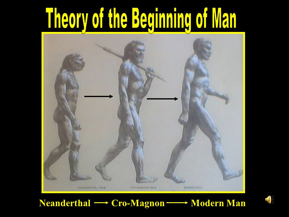 Theory of the Beginning of Man