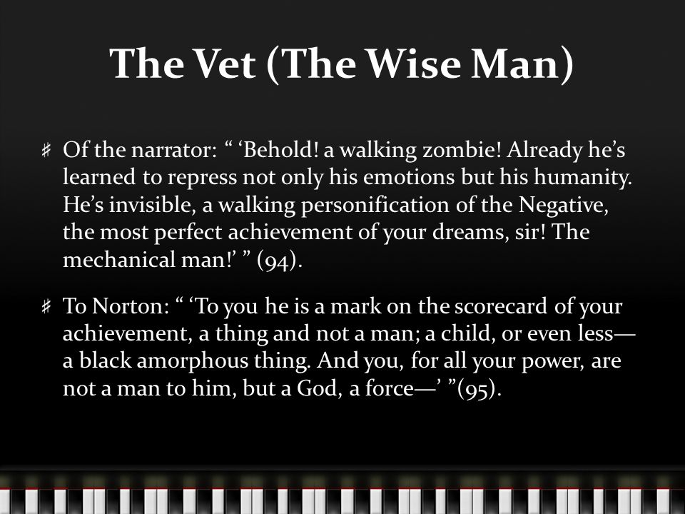 The Vet (The Wise Man)