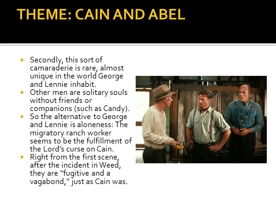 THEME: CAIN AND ABEL Secondly, this sort of camaraderie is rare, almost unique in the world George and Lennie inhabit.