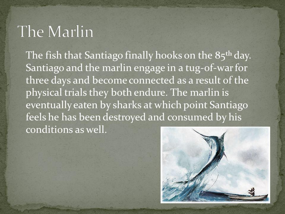 santiago the hero in the old man and the sea by ernest hemingway For whom the bell tolls ernest hemingway share the hemingway man was a the casual or superficial reader that the hemingway code hero will often be placed.