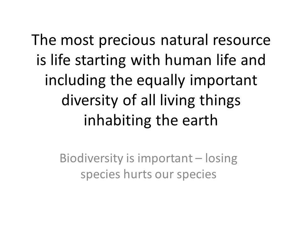 Biodiversity is important – losing species hurts our species