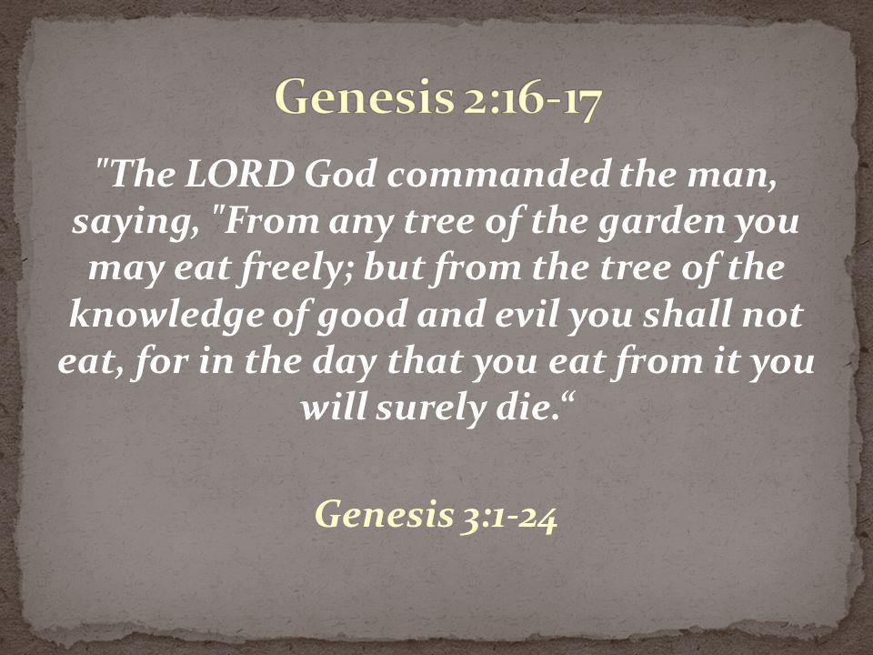 Genesis 2:16-17