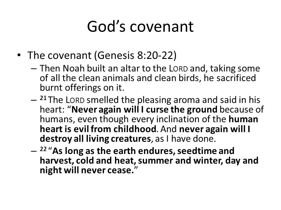 God's covenant The covenant (Genesis 8:20-22)