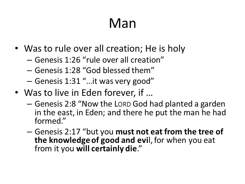 Man Was to rule over all creation; He is holy