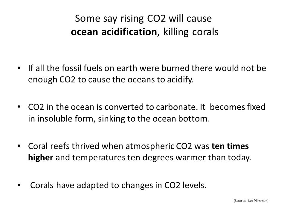 Some say rising CO2 will cause ocean acidification, killing corals