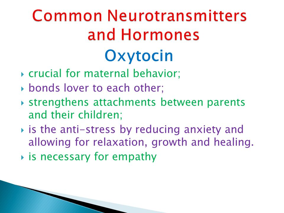 Common Neurotransmitters and Hormones