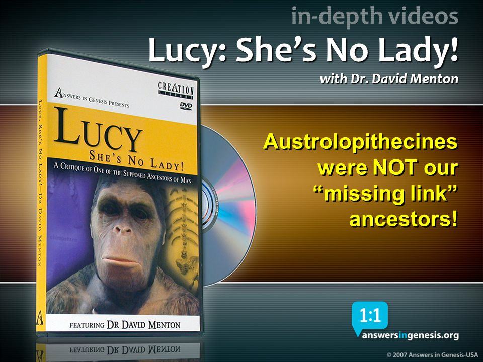 Lucy-She's No Lady DVD 04370 Lucy: She's No Lady! with Dr. David Menton. Austrolopithecines were NOT our missing link ancestors!
