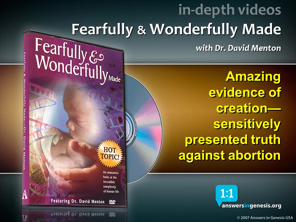 Fearfully and Wonderfully Made DVD 04352