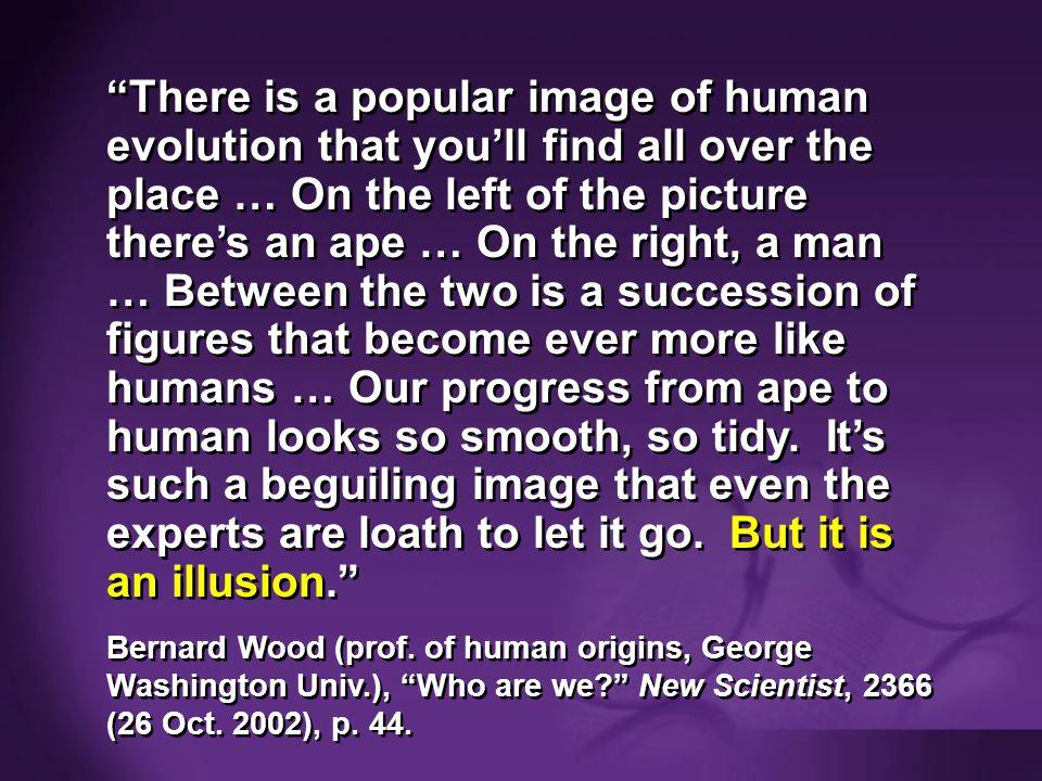 Wood 2002—human evolution is illusion