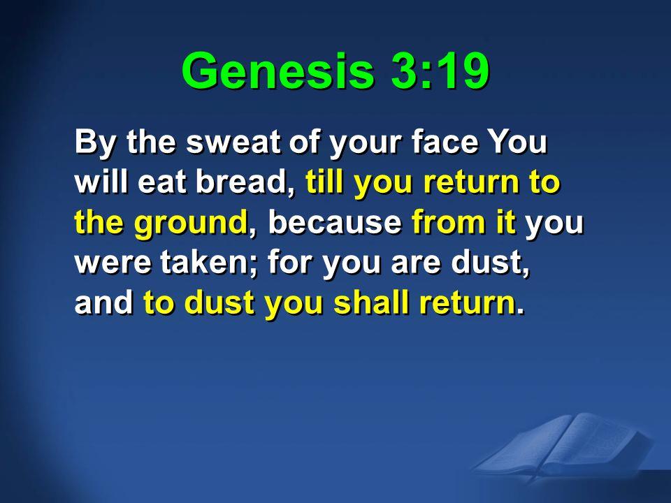 Gen. 3:19 NAS Genesis 3:19.
