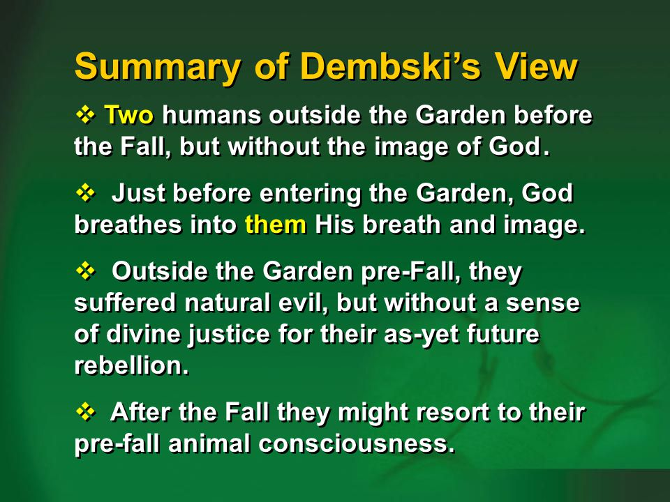Summary of Dembski's view