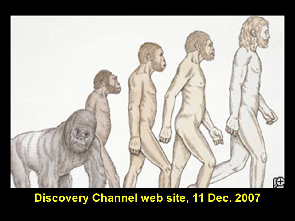 Discovery Channel web site, 11 Dec. 2007