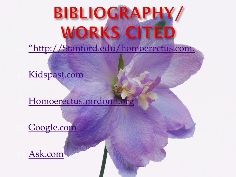 BIBLIOGRAPHY/ WORKS CITED