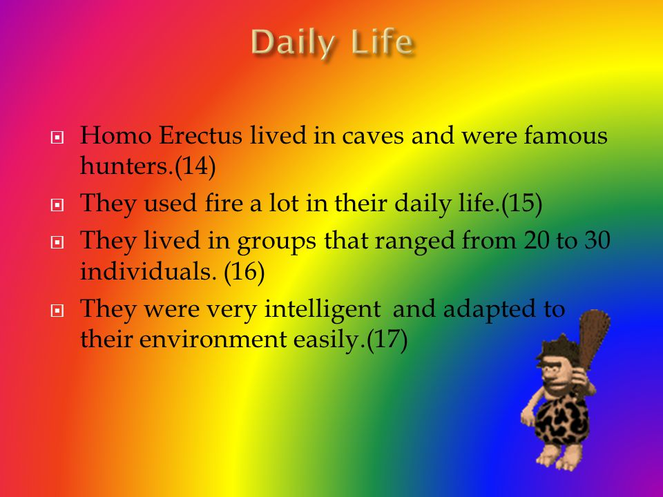 Daily Life Homo Erectus lived in caves and were famous hunters.(14)