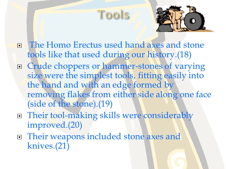 Tools The Homo Erectus used hand axes and stone tools like that used during our history.(18)